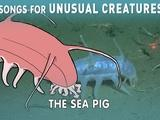 Songs for Unusual Creatures | A Song for the Sea Pig with The Kronos Quartet