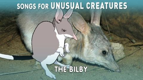 Songs for Unusual Creatures -- The Easter Bilby