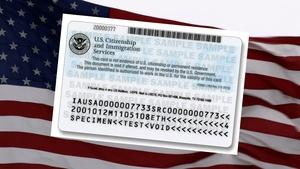 The Controversy Over H-1B Visas