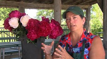 3005:Flowers & Farms