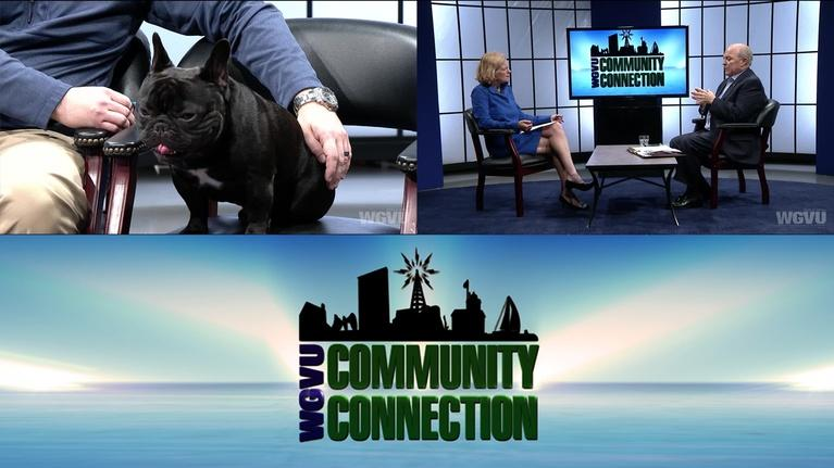 Community Connection: CPA & Veterinarian #1513