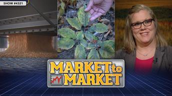 Market to Market (January 12, 2018)