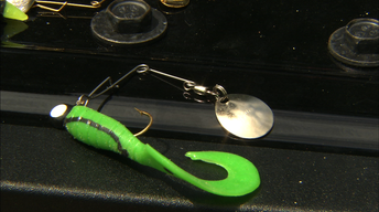 Gear time: Using the popular Beetle Spin lure