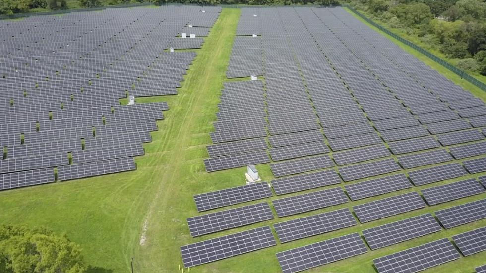 Large companies see payoffs in sustainability image