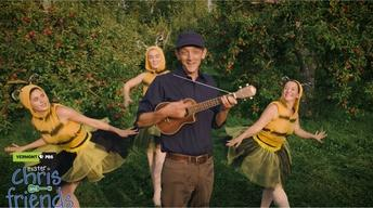 Hello little honeybee! Music video