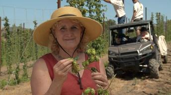 Homegrown Hops: Local Flavor for Local Brews