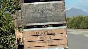 2017 BPF Ag Business Award: Bee Sweet Citrus