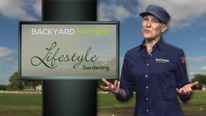 Lifestyle Gardening:  Wintertime Gardening