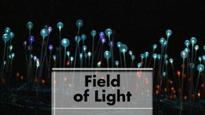 Bruce Munro's Field of Light in southern Colorado