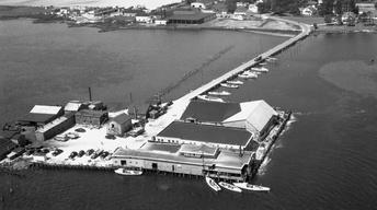 Til-Made, Remembering the Tilghman Packing Company