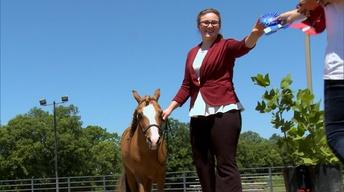 Caring for Horses and Farm Machinery Show!