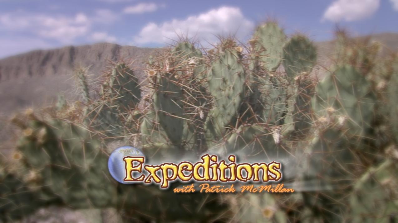 Promo: Expeditions with Patrick McMillan