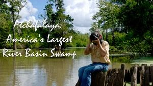 Atchafalaya: America's Largest River Basin Swamp