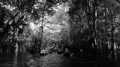 American Experience -- Into the Amazon