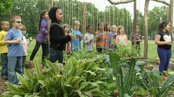 City Schoolyard Garden; Beleza Music (#1008)