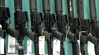 Gun Violence and Second Amendment Rights