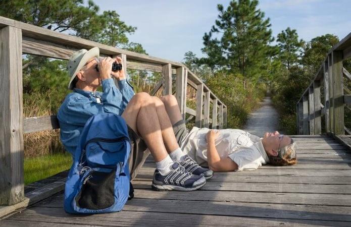 A Birdwatching Primer