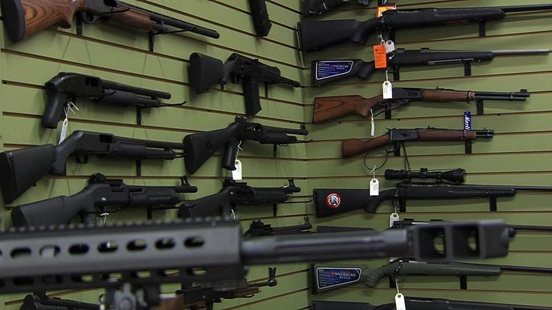 Gun Initiatives - October 17, 2014