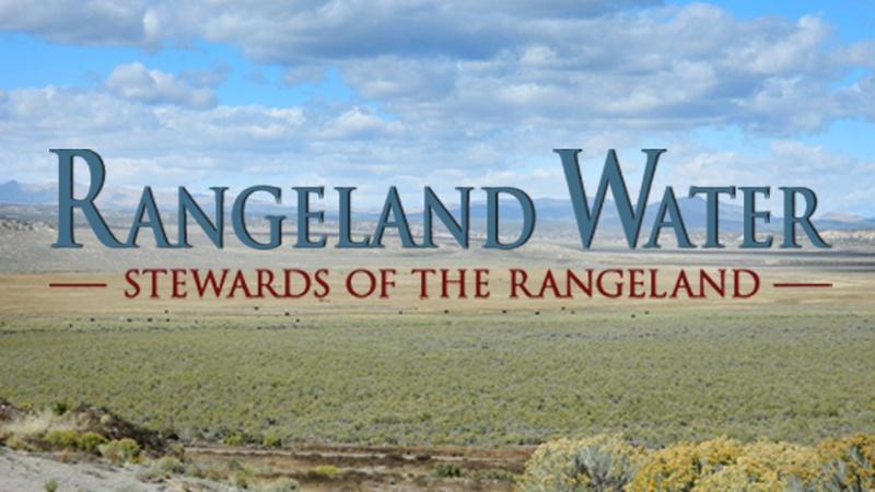 RANGELAND WATER