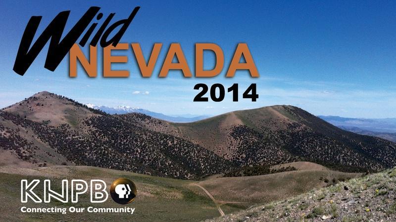 Wild Nevada 2014 Special