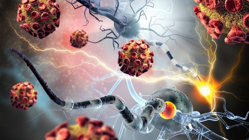 Autoimmune Diseases >
