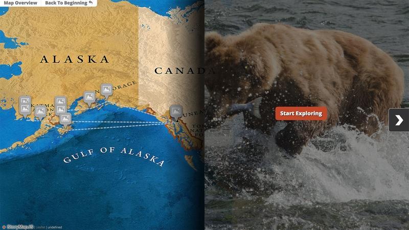 A Guide to Wild Alaska