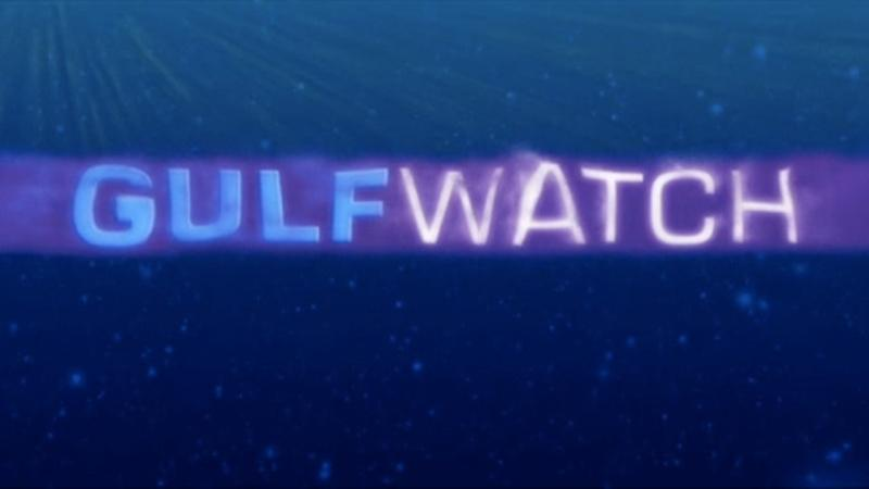 Gulf Watch: Shark Research