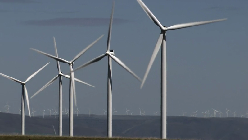 Beyond The Light Switch - Wind / Energy Efficiency