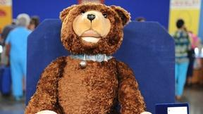 Image of How Teddy Bear Got His Name