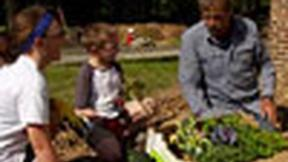 Image of How to Install a Raised Vegetable Garden with Arbors