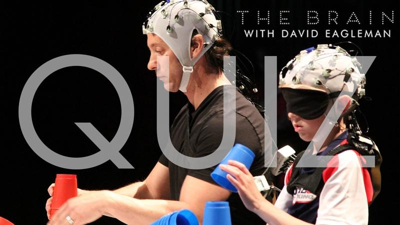The Brain with David Eagleman | Episode 3 Quiz