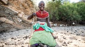 Image of Take the Samburu and Elephants Quiz