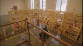 Image of The New Asylums