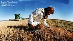 Image of GMOs
