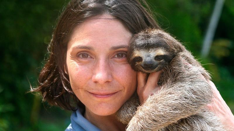 A Sloth Named Velcro