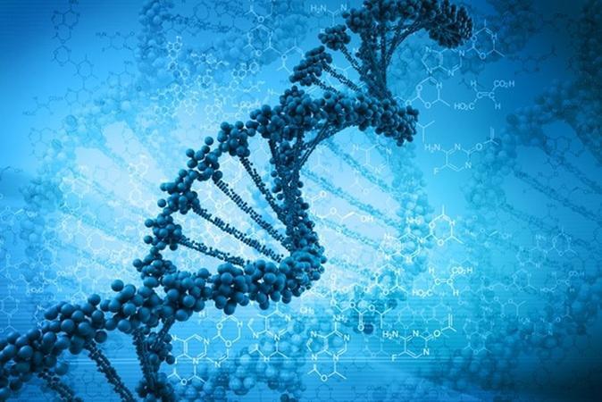 Three-parent DNA treatment for rare defect raises debate