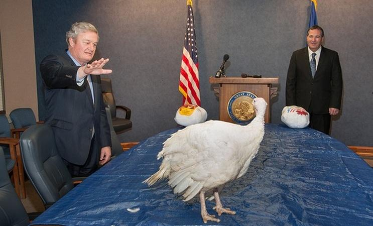 Governors and Turkeys: A Thanksgiving Tradition