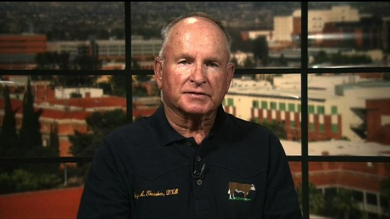 Arizona rancher on border enforcement in rural U.S.