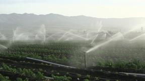 Image of Multinational corporations take action on water scarcity