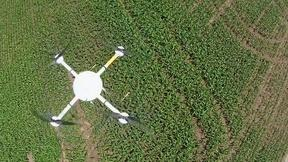 Image of Using drones to limit fertilizer flow into Lake Erie