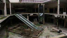 Image of The rise and fall of the American shopping mall