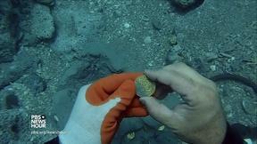 Image of Treasure hunters strike gold off Florida coast