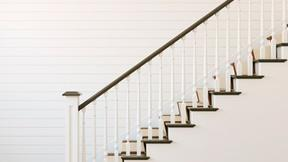 Image of The Many Steps to Coming Home