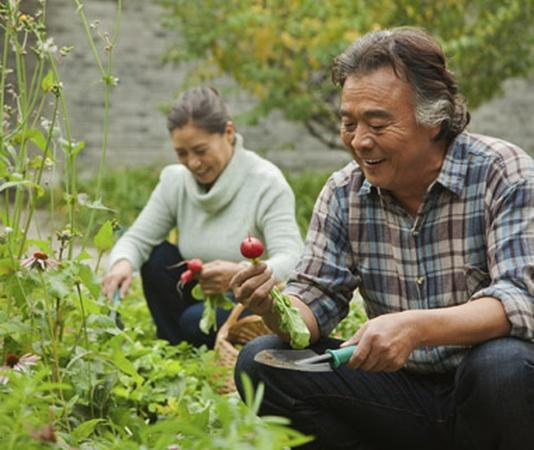 Retirement: It Just Might Be Good for Your Health