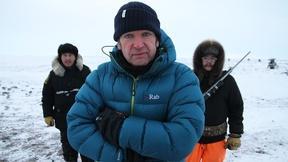 Image of Polar Bear Preview