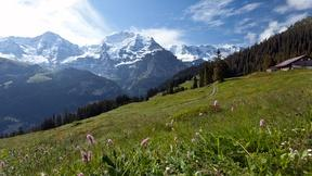 Image of Switzerland's Jungfrau Region: Best of the Alps