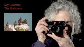 Image of Steven Pinker: My Cousins The Baboons