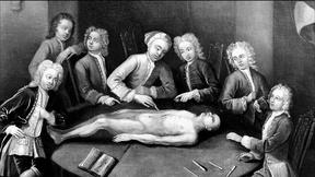 Image of The Rise of the Body Snatchers