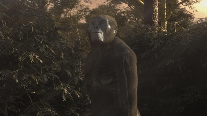 Ancient Human Ancestors: Walking in the Woods