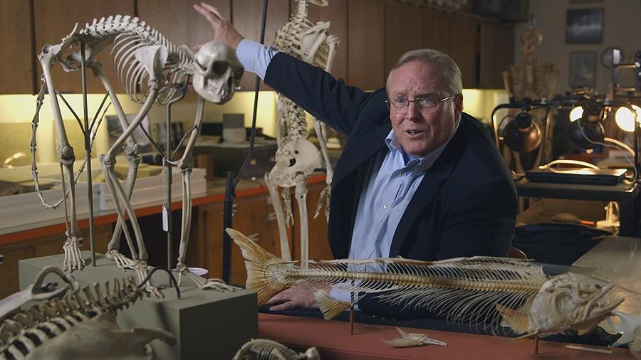 Bruce Latimer surrounded by several animal and human skeletons